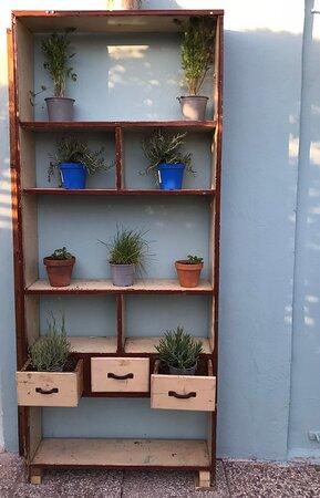 Angolino piante aromatiche