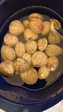 Tutte prebilatezzeche si possono gustare al ristorante sapore di mare via G Accarino 2 cava de tirreni