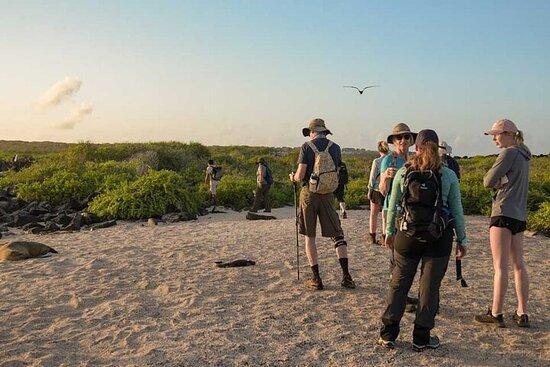 Expérience de croisière de 5 jours aux Galapagos