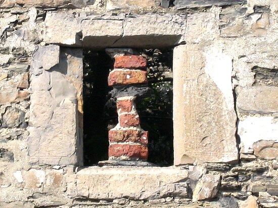 Window onto the past