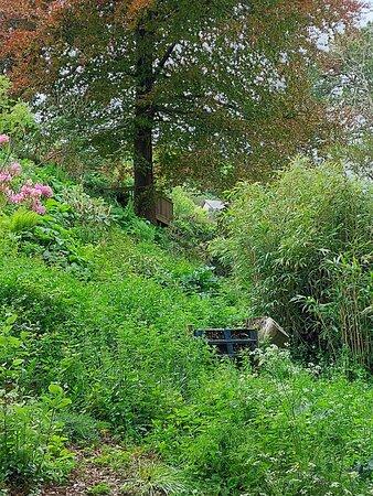 A selection of photos of the gardens.