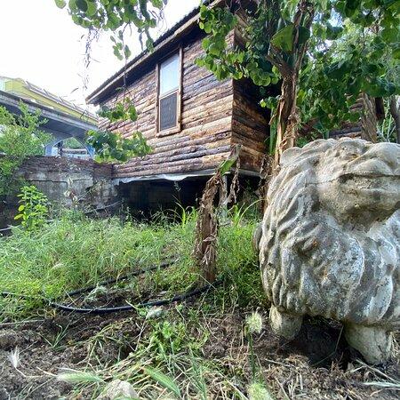 agaç evler ve çardak bölümleri