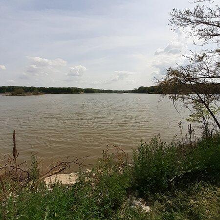 Salamonie Lake