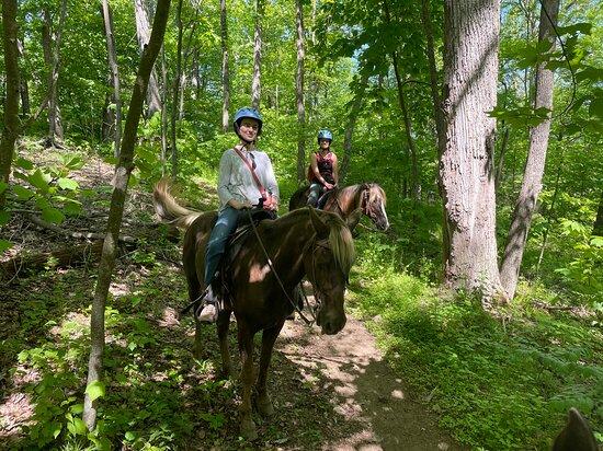 Appalachian Horse Adventures - Montebello, VA