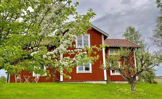 Stjarnhov, Suécia: Vårt vackra gamla gårdshus!