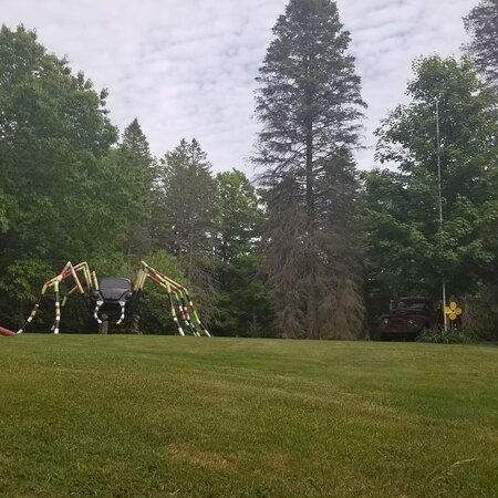 Unique art work on a front yard