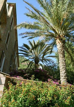 Façade, entrée - Picture of Hotel Colombo, Corsica - Tripadvisor