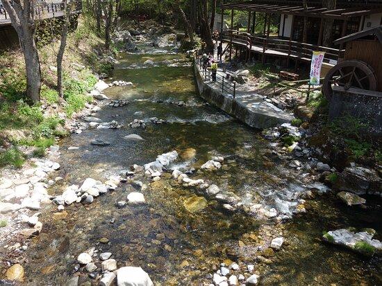 近くを流れる清水川