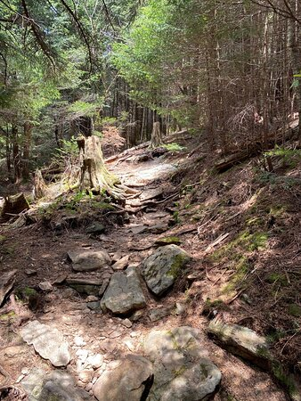 Balsam, NC: Step carefully descending the trail