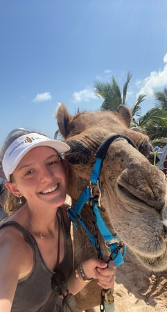 Camel Ride Tour from Cancun and Riviera Maya Photo