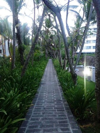 One of the pathways I found exploring the area beyond the pool.  Very pleasant.