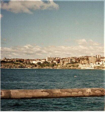 ボンダイ ビーチ