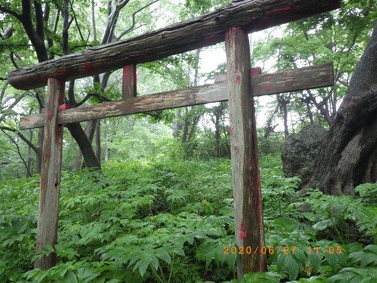 Tachi Inari Shrine