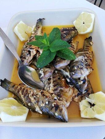 Quem gosta de sardinhas?