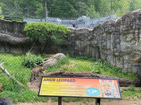 West Orange, NJ: Turtle Back Zoo