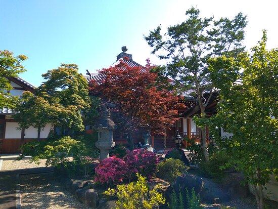 Saifukuji