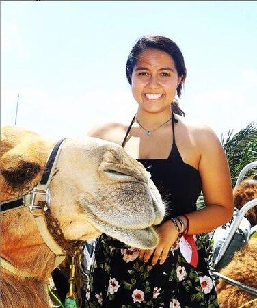 Camel Ride Tour from Cancun and Riviera Maya: Disfrutamos una sesión de fotos con los bellos ejemplares
