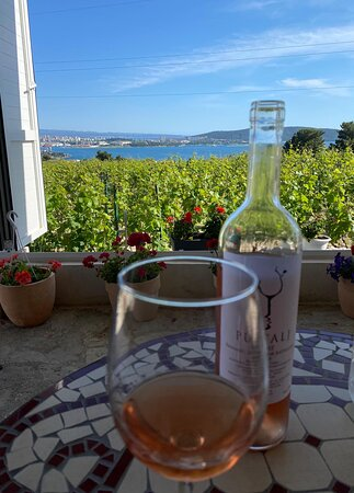 welcome Rose with a view