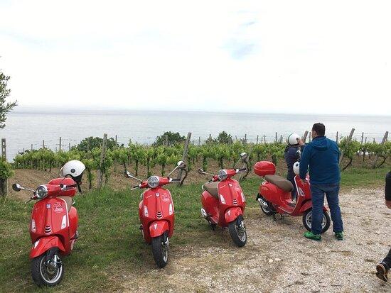 Vespa Tour Marche