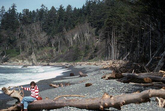 Memories of Ruby Beach