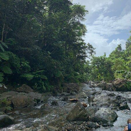 Фотография Tinajas Hiking Adventure to El Yunque Rainforest