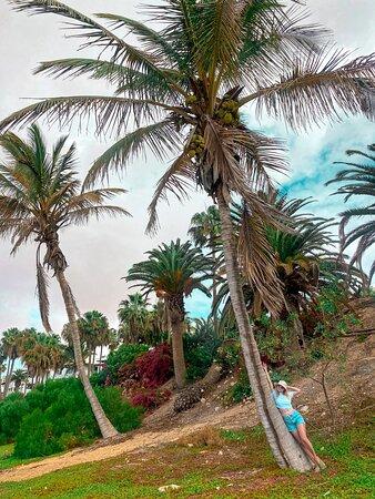 Fuerteventura, Spanje: Фуэртовентура зона отеля Melia