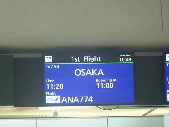 ANA (All Nippon Airways): CTS