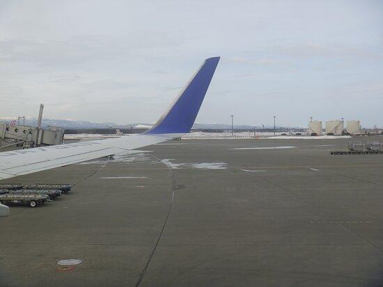 ANA (All Nippon Airways): NH774