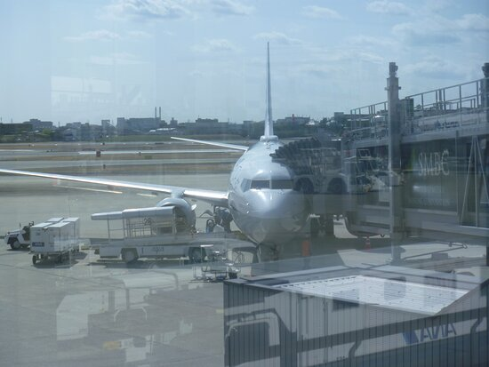 ANA (All Nippon Airways): B737-381 JA79AN