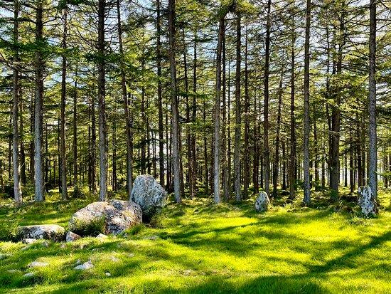 Nine Stanes Stone Circle