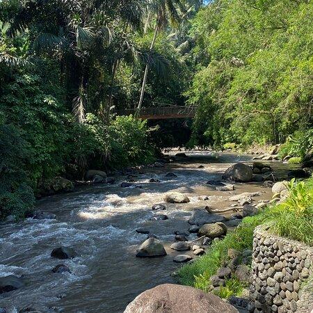 Experience at Four Seasons Sayan Ubud