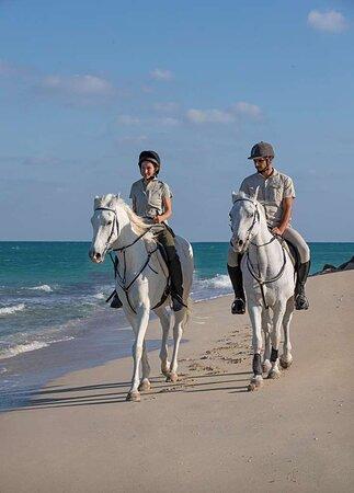 Sir Bani Yas Island, Các Tiểu vương quốc Ả Rập Thống nhất: Guests horse riding along the beach