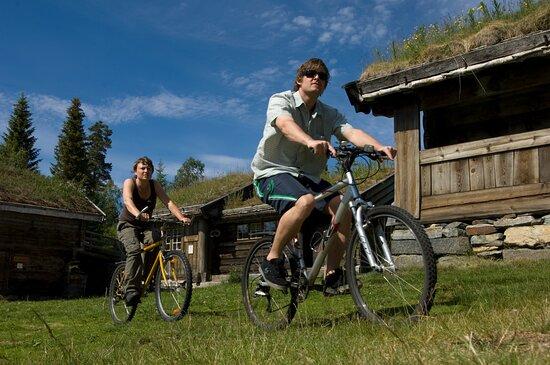 Rauland, Norvège: Sykkelutleie