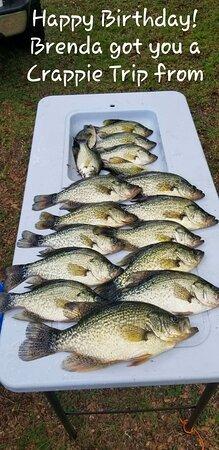 Alachua, FL: Orange lake