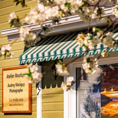 Galerie-Boutique de la Maison Verte