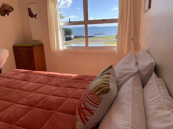 Paua family  Room