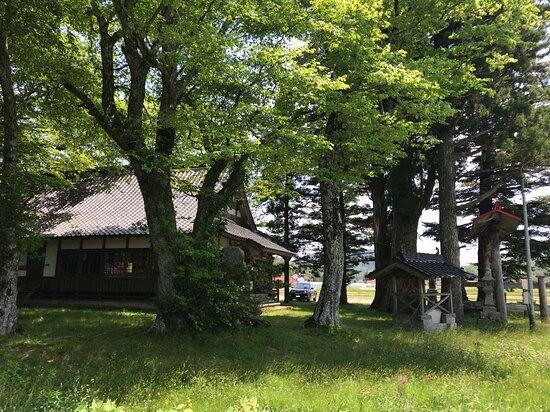 広島県, やはた大歳神社の拝殿に向かって左手から見た境内の様子です。