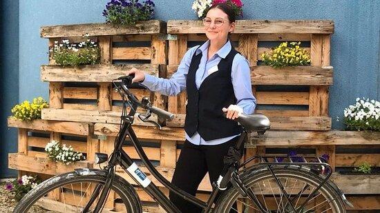Bike rental