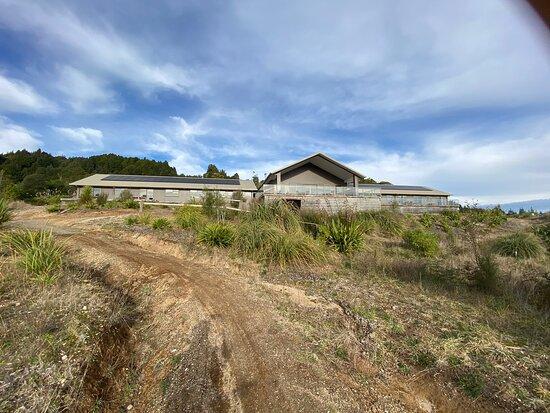 Pureora Forest Park صورة فوتوغرافية