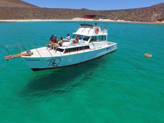 Baja Off Shore