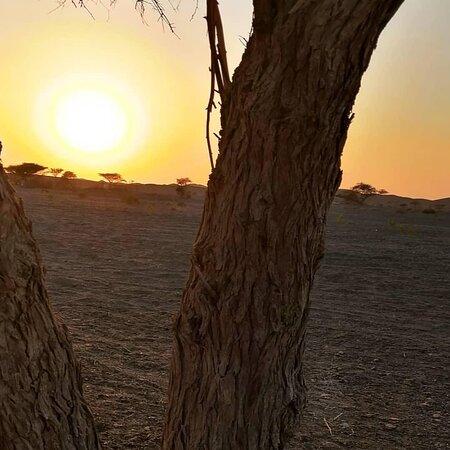Ibra, Oman: منظر الغروب😍 المضيبي