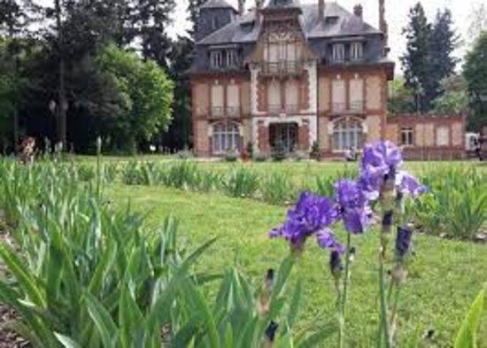 Saint-Cyr-en-Val, France: Chateau et Iris