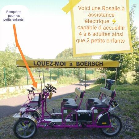 Les Rosalies du Piemont