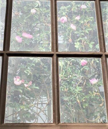 Rosenfönstret i Rolfstorps Kyrka i Rolfstorp