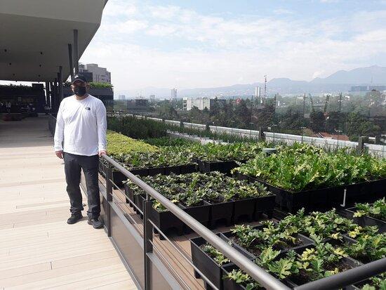 Roof top con alberca y bar.