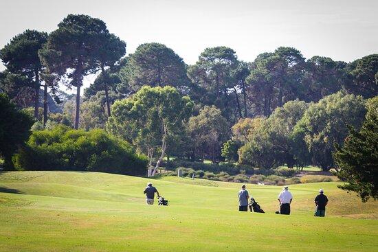 Como, Úc: Collier Park Golf