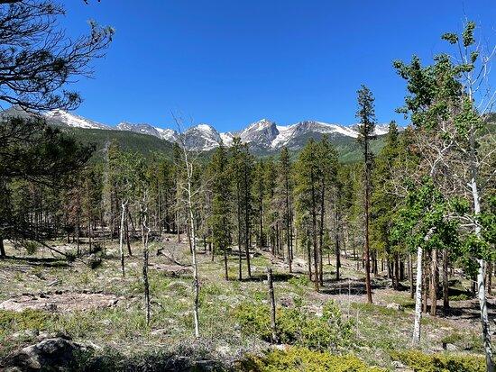 Foto de Glacier Creek Stables, Parque Nacional de las Montañas Rocosas: Trail ride! - Tripadvisor