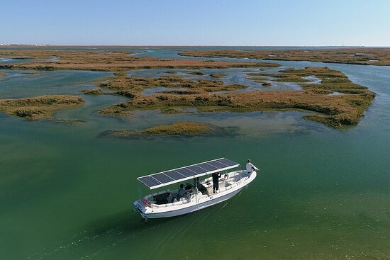Tour delle isole ecosostenibili a Ria Formosa al Solar Boat Faro