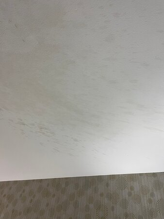 Gross walls and ceiling in our room