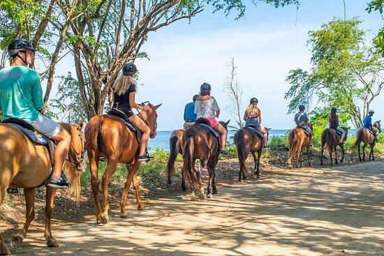 Chukka Zipline, Tube, & Horse Ride & Swim With Access Pass To Ocean...